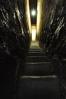 Zajímavostí jsou jistě i pod kostelem umístěné rozsáhlé katakomby, do kterých byli pochováváni v letech 1674-1783 řádoví bratři a šlechta sympatizující s jezuity. Těla zemřelých byla konzervována působením zvláštního systému větracích kanálů.My však úzkým průchodem zamíříme opačným směrem, přímo vzhůru.