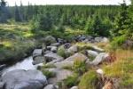 Bílá Smědá nedaleko rašeliniště a Malé klčové louky, kde pramení.