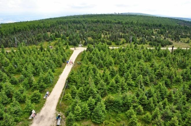 2,5 km dlouhá cesta na Stóg Izerski vede přes mělké sedlo Lacznik (1 066 m n. m.).