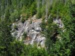 Na několika prudkých srázech se odhaluje kamenné podloží hory.