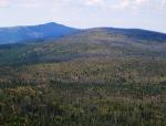 Směrem k Roklanu se ukazují obrovské poničené plochy lesa. Naše cesta naštěstí povede trochu nížeji, bukovým a smíšeným lesem. Pět hodin cesty pro nás, se značnou zátěží, znamená asi osm hodin chůze volným tempem.