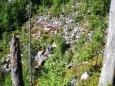 Taufelsloch je strž, která v hlouby spadlého kamení skrývá ledovou jeskyni. Z chladu, který zdola vane, je to patrné.