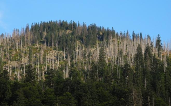Pomalu se blížíme vrcholu, který je od časného rána vystaven horským slunečním paprskům.
