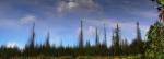 Duchové lesa vystupují z hlubiny jezera. Kolik duší mrtvých stromů bloudí dnes po celé Šumavě? Jsou jich miliony!