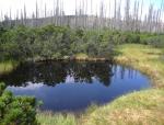 Několik malých jezírek zkrášlí ještě víc malebnou krajinu rozlehlých vrchovištních slatí.