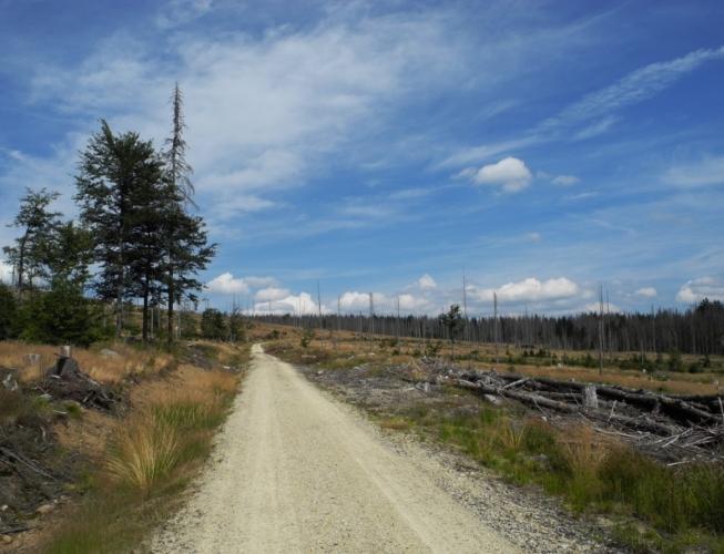 Cesta k hraničnímu přechodu Poledník.