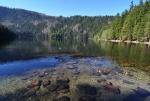 Černé jezero je největším karovým jezerem ledovcového původu na Šumavě a zároveň i největším jezerem v České republice, když odečteme vodní plochy vzniklé s přispěním člověka. Své jméno dostalo podle černé hladiny, které způsobuje až 9 metrů vysoká vrstva kalu, tvořená hlavně pylem z okolních jehličnanů.