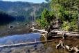 Černé jezero nemá žádný viditelný přítok a je napájeno z podzemních pramenů vyvěrajících na úpatí Jezerní hory. Voda z jezera odtéká Černým potokem do řeky Úhlavy. Maximální hloubka zdánlivě bezedného jezera dosahuje úctyhodných 39,8 metrů. Současně je jezero nejníže položeným ze všech šumavských jezer, přestože se nachází v nadmořské výšce 1008 m.