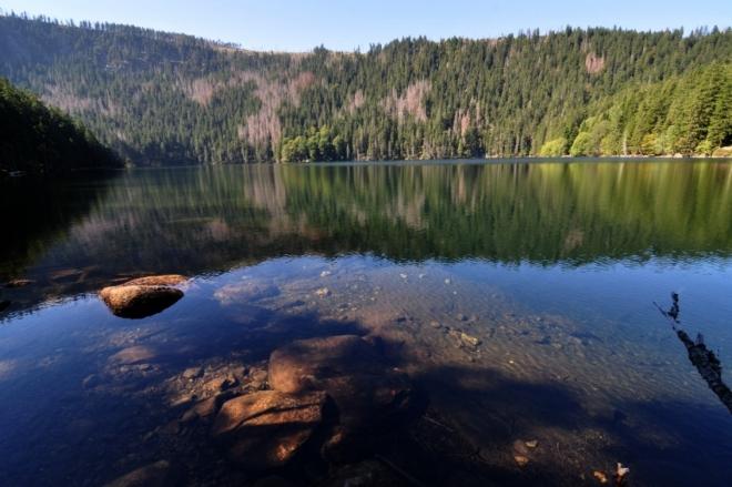 Pod severním svahem Jezerní hory se zvedá 320 m vysoká Jezerní stěna. Z české strany (jak jinak) je nepřístupná, ale z Bavorské nově atakuje vrchol Svarohu značená stezka, ze které je pohled na jezero i Jezerní stěnu možný. Stačí ujít pár desítek metrů na naše území.