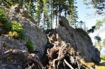 Vrcholem Špičáku je tato skála (1 201 m n. m.) na asi 100m dlouhém a postupně se svažujícím skalnatém hřebenu.