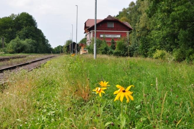 Nemilkov leží asi 2 km od vlakové zastávky, která se nynI jmenuje Nemilkov/Velhartice. Květinami je celé nádraží sladce provoněno a tak nám necelá hodinka do příjezdu vlaku rychle uteče.