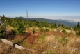 Dostáváme se mezi Jezerní horu a Svaroh. Odtud je jen kousek k vyhlídce na Černé jezero. Ostrý je bonusem.