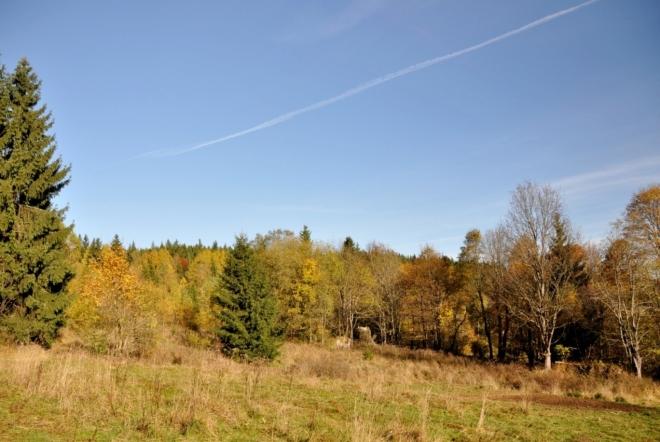 Zde stávaly tzv. Chlumské domky. Jdeme po žluté TZ, ale dál pokračujeme lesní cestou ke Kamennému vrchu. K němu musíme ovšem sestoupit, zde jsme 930 m n. m., tedy skoro o sto metrů výš.