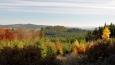 Kamenný vrch (833 m n. m.) výrazně zbarvilo listí buků. K němu směřujeme.