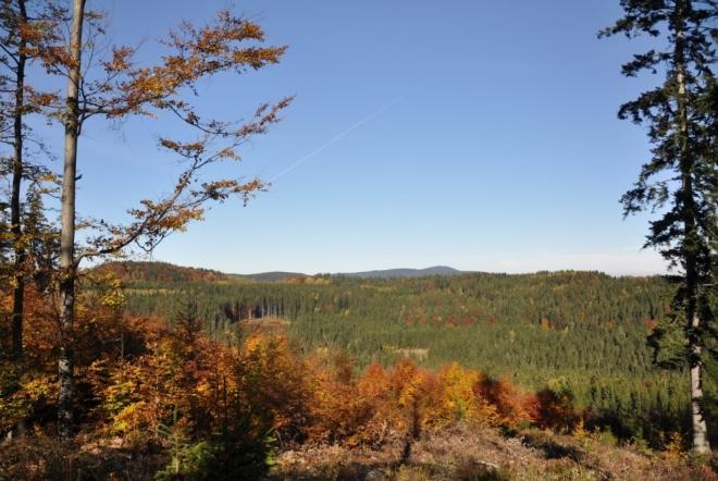 V dáli je Libín (1 096 m n. m.), před ním Vysoká mýť (920 m n. m.).