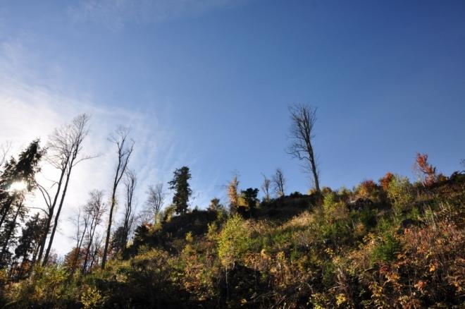 Nad hlavou máme vrchol Chlumku (1 025 m n. m.).