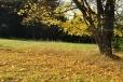Podzimní nostalgie mne dostává...