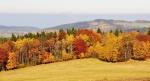 Teplé barvy podzimu.