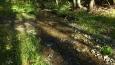 časem jeho bezejmenný přítok ...nám se zadařilo bez namočení ... psí holky to vzaly rovnou potokem, jak jinak  ...