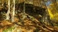 cestou míjíme několik skalních útvarů, které asi ukázala světu nedaleko tekoucí Berounka ...