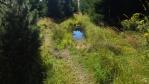 opět jdeme mořadem a rašeliništěm ...