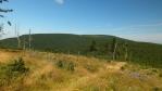 tohle jsou Vápenný vrch a Koruna, podle mne nejvíc zalesněný hlavní hřeben hor ...