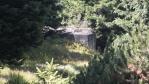 cestou z pod vrcholu Homole jsou desítky bunkrů, postavených na obranu republiky po roce 1935 ...