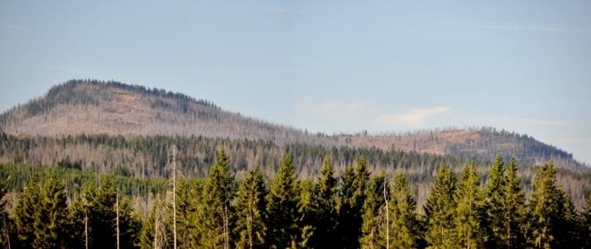 Na dosah se zdají vrcholy Roklanu z Modravské hory. Ta je dnes bezlesá a poskytuje výtečné výhledy k hraničním horám.