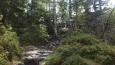 kusama to bylo dost do kopce, mezi skálami, kořeny stromů ...