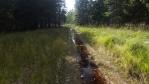 """""""zkratka""""; z kraje cesta, pak cesta s potokem uprostřed ... nejdřív jen trošku voda v trekových sandálech, posléze rašelinová koupel nohou skor ke kolenům; jinde se za to platí dost peněz, my jsme to měli zadarmo ..."""
