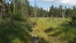 pak uz jen potok, popadané stromy, slyšel jsem za sebou i nadávání;  hodně dobrodružná část zkratky, pak zase skorocesta a posléze cesta, ušetrili jsme si asi tak dvě hodiny chůze ...