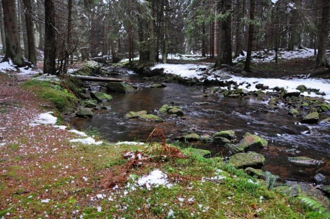 Losenice pramení asi 1,5 km severoseverozápadně od Přilby v nadmořské výšce 1 118 m n. m. Její tok tvoří od pramene až k soutoku s Otavou hranici Národního parku Šumava. Jde o jednu ze zlatonosných řek a v minulosti se zde zlato dobývalo. Důkazem jsou sejpy, které v okolí říčky můžete spatřit.