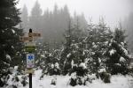 Na Rovinách nás vítá rozcestník a také vyšší vrstva mokrého sněhu.