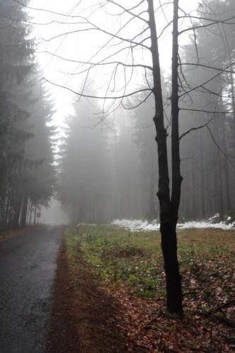 Cestou k Pohorsku.