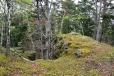 Vrchol Malého Plešného je na snadno přístupné skalce. Rozhledy zde chybí.