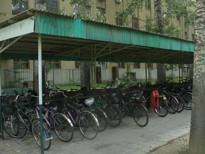 Zaparkovaná kola u univerzity. Většina jich je starších, některé jsou na hranici použitelnosti, ale občas člověk vidí i nové horské kolo. Bohužel se však dle velkého počtu aut na silnicích a malého počtu kol na cyklostezkách zdá, že Číňané přecházejí na pohodlnější, ale méně úspornou dopravu. A taky metro bývá dost nacpané.