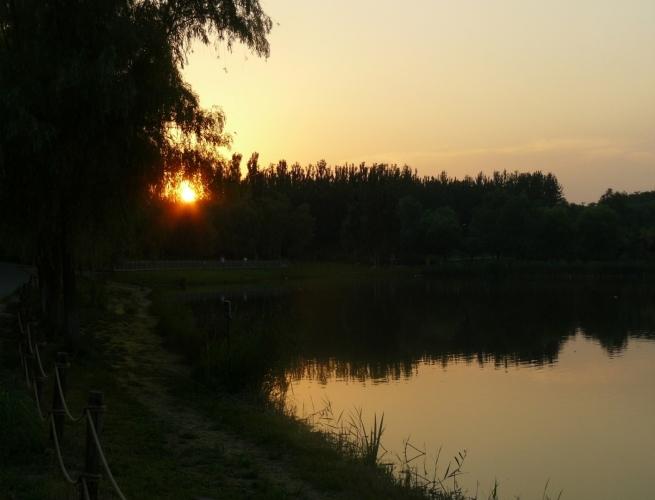 Západ slunce v parku