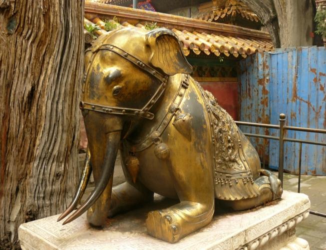 Podivně klečící slon. Chudák, má obráceně ohnutá kolena.