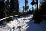 Sněhu postupně přibývá a cesta často příkře stoupá.