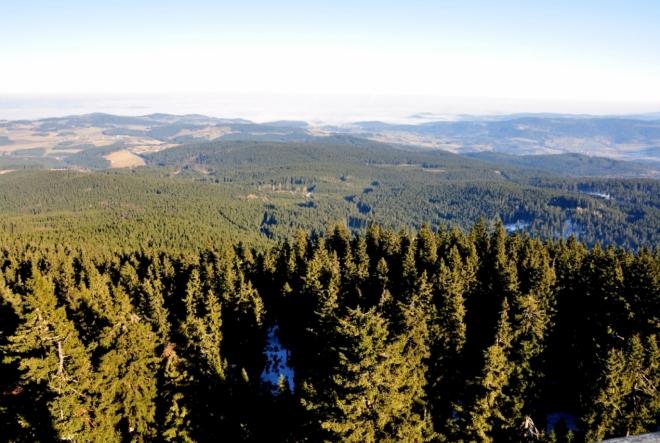 Zatímco z předhůří Šumavy mlhy postupně zmizely, na nejvyšší vrcholy hor je silný vichr vyfoukal z dunajských nížin Německa.