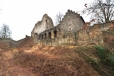 V první polovině 16. století skončilo na Klenové panství rodu Klenovských a přes několik dalších majitelů hrad r. 1553 získal Jiří Harant z Polžic a Bezdružic, nezámožný šlechtic, který však působil jako vysoký úředník v císařských službách. Ten na Klenové znovu obnovil panské sídlo. Stavební práce se týkaly zejména horní části hradního paláce. Jedinou dodnes zachovanou částí je budova tzv. purkrabství, tehdy přestavěná z pozdně gotické kuchyně. V sálovém prostoru v patře byl před polovinou 20. století objeven freskový vlys s erby majitelů panství a spřátelené šlechty. Podle tradice se na Klenové narodily některé z mnoha dětí Jiřího Haranta, mezi nimi i Kryštof Harant z Polžic a Bezdružic, významný renesanční politik, cestovatel, hudební skladatel a spisovatel. Ten panství převzal po roku 1584 spolu se svým bratrem Adamem. Adamova část zůstala v harantovských rukou, zatímco Kryštofova se dostala jeho švagrovi, opět Přibíku z Klenového. V roce 1646 byly obě spojeny v rukou hraběte z Martinic. Zhruba od této doby se datuje pustnutí. V roce 1737 se hrad připomíná jako trosky.