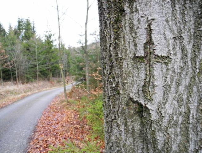 Křížková cesta nad Dunovicemi dost rychle nabírá výšku. Objevují se první výhledy.