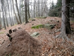 Knížecí kámen je nahoře s převahou buků.
