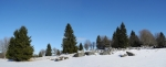 Vrcholek s kótou 1025 m n. m. je kosek nad Hájenkou Knížecí Pláně a tvoří ho množství nakupených balvanů. Vyrovnat se s kontrastem bílého sněhu a tmavých stromů je pro foťáček docela problematické. Dost fotek musím nakonec smazat.