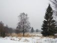 Niva soutoku Studeného a Vydřího potoka, kde začíná Novosvětská slať.