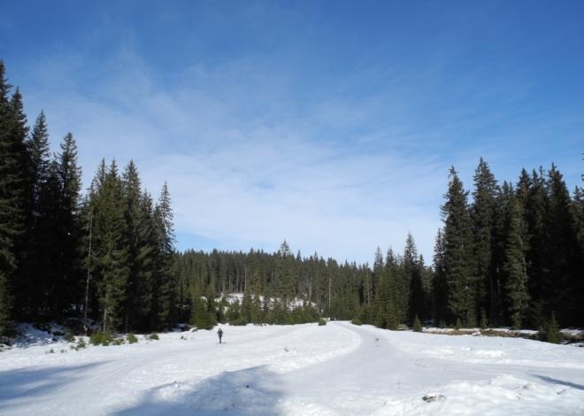 V ponděli se po přechodu fronty, ze které připadl jeden centimetr nového sněhu (!), vyčasilo a je inverze. Nahoře pět čeká teplý fén, azuro a tající sníh.