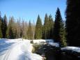 Sjezd do Modravy byl zezačátku v rozměklém sněho pomalý, ale nakonec to po ledové stopě frčelo o sto šest.