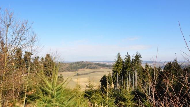 Rozhled je stromy hodně omezený.