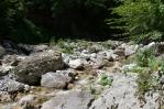 Přítok Tolminky, Triglavský národní park