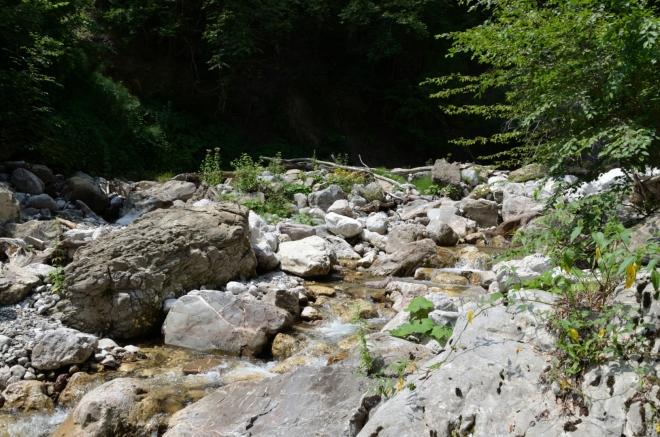 Zpátky nás Primož vede zkratkou přes nějaké ty lesní krpály, kluzké kameny v potoce a podobné věci. Mám docela strach o foťák, takže jdu opatrně a výpravu trochu zdržuju.
